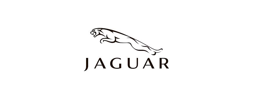 Coches electricos para niños Jaguar - cars12v